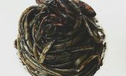 Linguine al nero di seppia